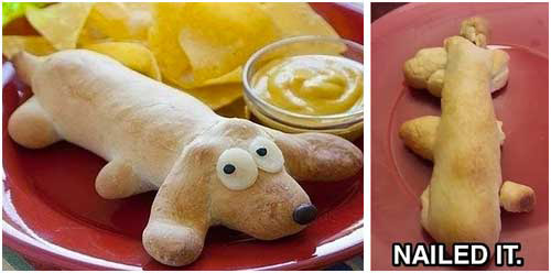 pinterest-fails-dog