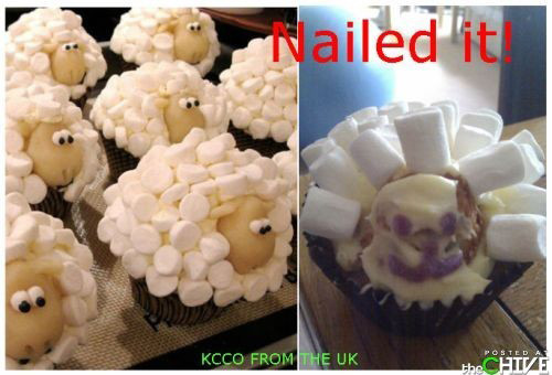 pinterest-fails-sheep